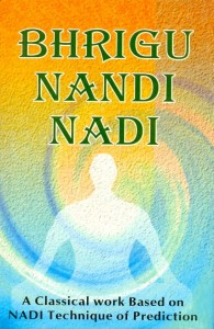 Bhrigu Nandi Nadi [Back In Print] By R G Rao [RP]